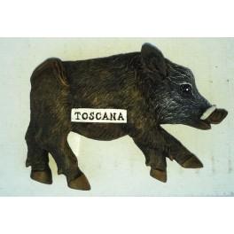 CALAMITA CNGHIALE  TOSCANA